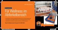 BD Freilaufbucht - Für Wellness in der Abferkelbucht