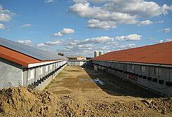 Zwei gelungene Neubauten mit Stalleinrichtungen für die Elterntierhaltung von Big Dutchman
