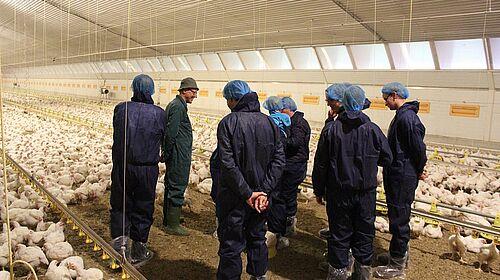 Landwirt Abeln erklärt seine Hähnchenmast