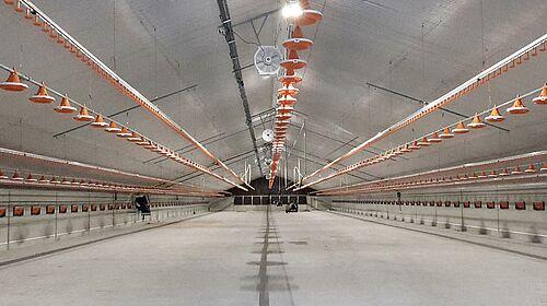 Der neue Stall für die Hähnchenmast vor Inbetriebnahme