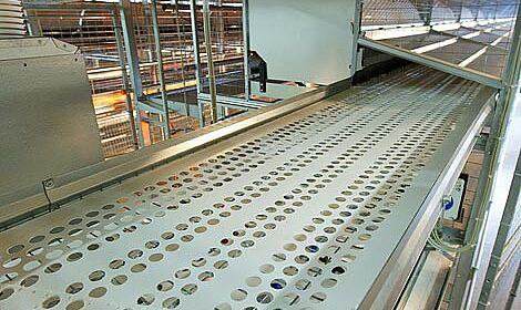 Stalleinrichtungen: das verbreiterte Eierband