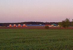 Vier Neubauten für die Hähnchenmast mit moderner Geflügelstalleinrichtung