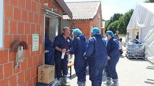 Besucher betreten den Stall in Schutzkleidung