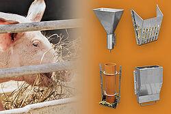 Schwein und vier verschiedene Raufutterspender