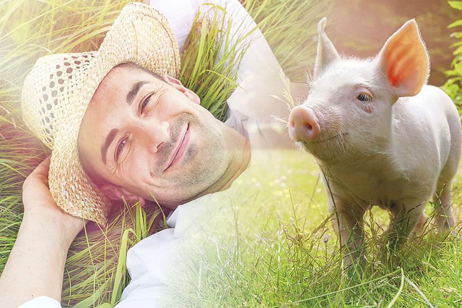 Mann und Ferkel im Gras